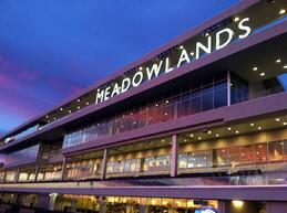 MeadowLands Racing Party