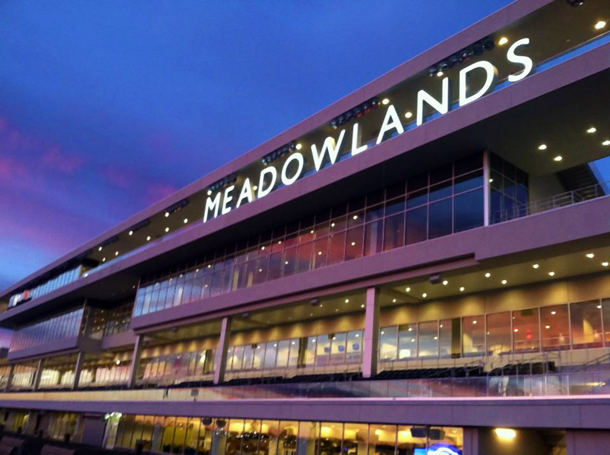 MeadowLands Racing Party